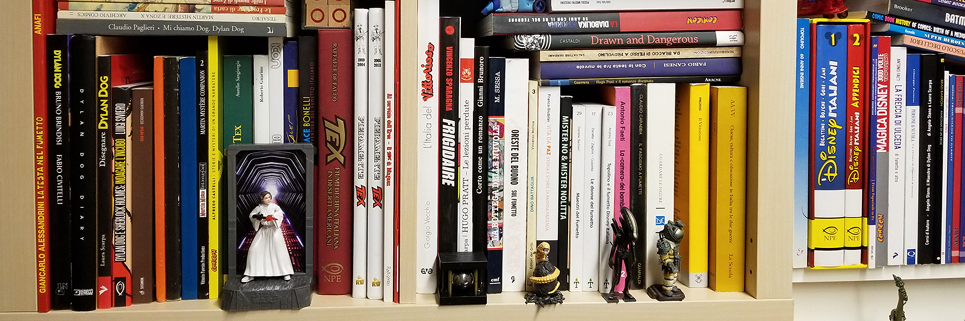 Image of a bookshelf full with books and action figures.